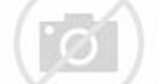 FOTO Spesifikasi HARGA mobil Toyota Avanza Veloz › Berita Otomotif ...