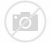 Johnny Bravo Cartoon