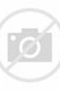 Rocky Boy Model New Star Sets
