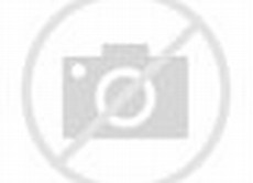 Models Like Alina Ballet Star