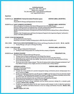 Resume Examples For Professional Special Guides For Those Really Desire Best Business