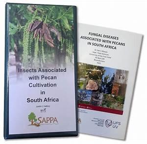 Publications  U2013 Sappa