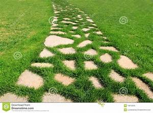 chemin en pierre dans la texture de jardin d39herbe verte With chemin de jardin en pierre