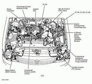 2005 Maxima Engine Diagram Universal Wiring Diagram 1997 Nissan Altima Exhaust System Diagram