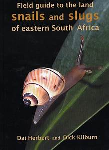 Field Guide To The Land Snails And Slugs Of Eastern South