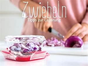 Zwiebeln Richtig Lagern : zwiebeln richtig lagern so geht s emsa emsaliebe zwiebel lagerung onion healthyliving ~ Watch28wear.com Haus und Dekorationen