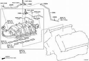 Toyota Land Cruiser Hose  Fuel Vapor Feed  No  1  Engine