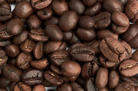 Find the newest fry coffee meme. Beautiful Fried Grains Of Coffee Stock Photo - Image of falling, focus: 152294008