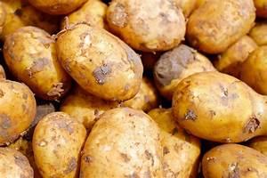 Kartoffeln Und Zwiebeln Lagern : kartoffeln aufbewahren k che kartoffeln und zwiebeln in zeitschriftenhaltern lagern ordnung ~ Markanthonyermac.com Haus und Dekorationen