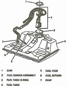 Chevy 3 8 Engine Diagram : i have a 1996 chevy camaro with a 3 8 i pulled the car in ~ A.2002-acura-tl-radio.info Haus und Dekorationen