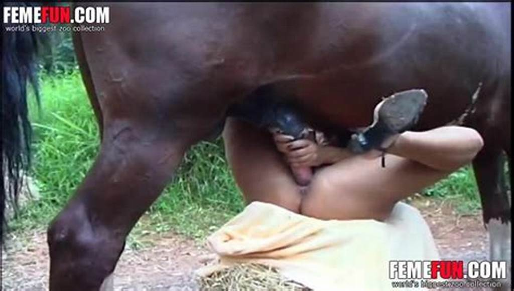 #Horse #Cums #In #Ass #After #Fucking #Mature #Woman #Like #Crazy #In