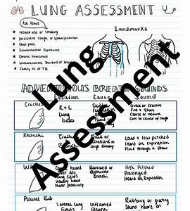Lung Assessment Study Guide