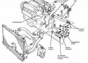 2000 Accord Car Stereo Wiring Diagram
