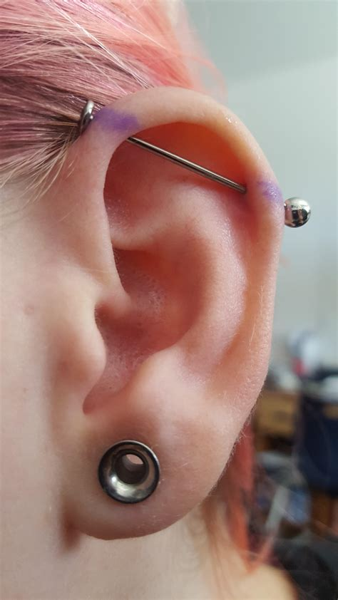2g lobes and a day old industrial! : piercing