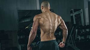 The Complete Guide For Building A Bigger Back