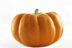 Pumpkin, Baozi