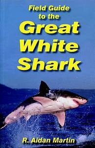Field Guide To The Great White Shark
