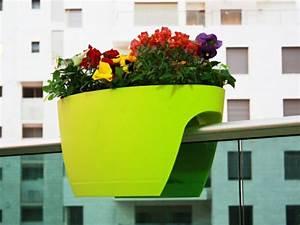 Große Blumentöpfe Für Außen : platzsparende pflanzk bel und m belst cke f r innen und au en ~ Watch28wear.com Haus und Dekorationen