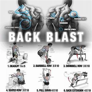 Big Back Blast Training   Healthy Fitness Workout Plan  With Images
