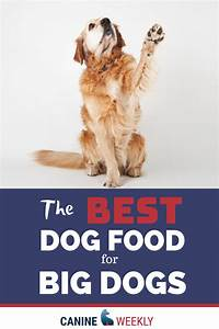 11 Best Large Breed Dog Food Picks In 2020