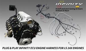 Msd Engine Computer Wiring Harnes