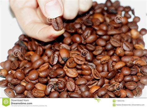 From season 4 episode 16 fry uses money given to him by the government on coffee and buys 100 cups of coffee!buy the complete futurama box set to enjoy. My favorite coffee. stock image. Image of fried, large - 118642765