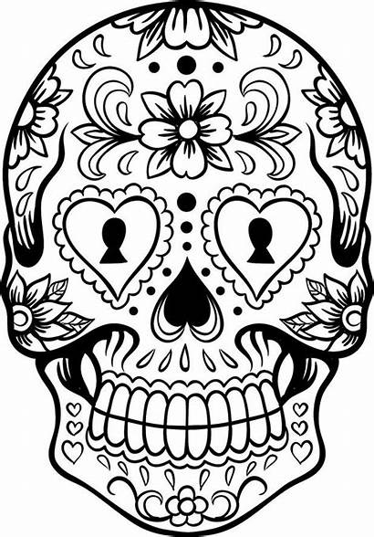 Coloring Pages Teens Printable Skull