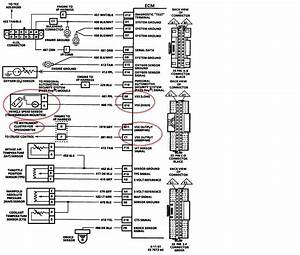 1992 Firebird Wiring Diagram Mirror