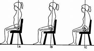 Ergonomics And The Body