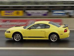 2003 Ford Mustang Mach 1 Gallery 5407 | Top Speed