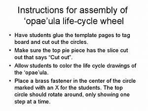 Instructions For Assembly Of  U0026 39 Opae U0026quot  Ula Life