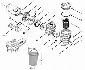 Flotec Ag Pump  Models Fp6022  Fp6042 Parts
