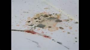 Schimmel Von Der Wand Entfernen : schimmel entfernen an der wand im bad usw vlog 12 youtube ~ Watch28wear.com Haus und Dekorationen