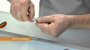 Lan Kabel Belegung : konfektionierungsvideo steadytec industrial ethernet rj45 ~ A.2002-acura-tl-radio.info Haus und Dekorationen