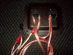 Earcandy 2x12 Guitar Amp Speaker Cab Series Wiring Harness W