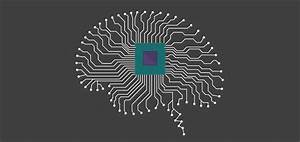 Artificial Neural Networks Explained