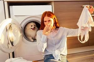 Geruch Aus Schuhen Entfernen Hausmittel : geruch aus polyester entfernen diese hausmittel helfen ~ A.2002-acura-tl-radio.info Haus und Dekorationen