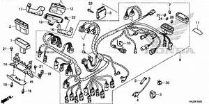 Honda Atv 2014 Oem Parts Diagram For Wire Harness