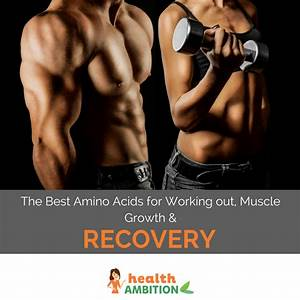 The Best Amino Acids For Working Out  Muscle Growth And Recovery