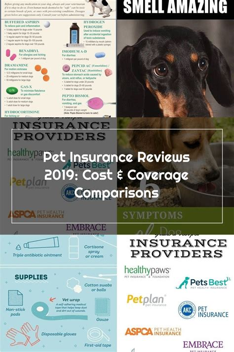 Compare our top picks on coverage plans, costs, reviews and more. These are the best pet insurance providers in the nation: Compare them side by side & learn how ...