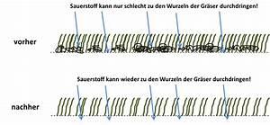 Vertikutieren Von Hand : rasen vertikutieren richtig gemacht schritt f r schritt erkl rt ~ A.2002-acura-tl-radio.info Haus und Dekorationen