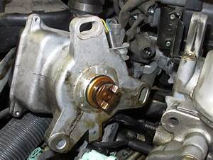 Honda Accord How To Replace Internal Seal Of Distributor