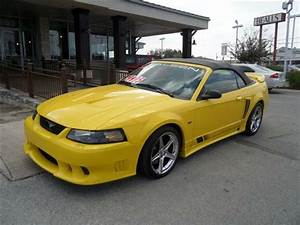 Any saleen experts? | Mustang Forums at StangNet