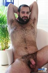 Gay hairy bear movie