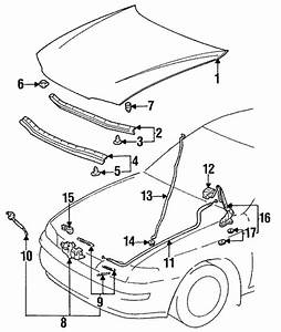 Toyota Corolla Parts Diagram