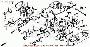 Honda Trx350 Fourtrax 4x4 1987  H  Usa Wire Harness