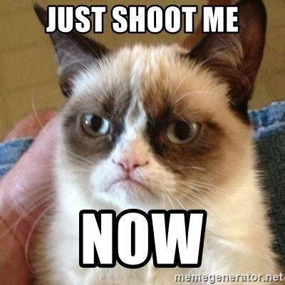 Meme anniversary happy funny memes meow kitty cat hipster generator cats humor animal memecreator don animals. JUST SHOOT ME NOW - Grumpy Cat   Meme Generator