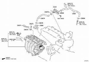 Toyota Corolla Hatchback Hose  Fuel Vapor Feed  No  3