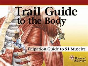 5th Edition Trail Guide To The Body Instructor Palpation