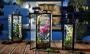 Laterne Dekorieren Lichterkette : laterne dekorieren mit pflanzen laterne garten deko laterne und dekorieren ~ Watch28wear.com Haus und Dekorationen
